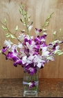 Modern Orchids from Lagana Florist in Middletown, CT