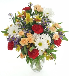 Cheerful Wishes from Lagana Florist in Middletown, CT