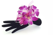 Fancy Purple Dendrobium Corsage from Lagana Florist in Middletown, CT