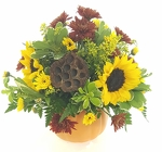 Pumpkin Planter from Lagana Florist in Middletown, CT