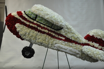 Airplane from Lagana Florist in Middletown, CT