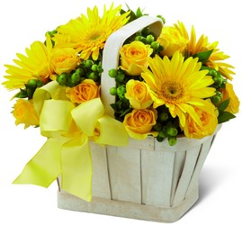 The FTD Uplifting Moments Basket from Lagana Florist in Middletown, CT