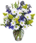 Lazy Daisy & Delphinium from Lagana Florist in Middletown, CT