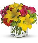 Teleflora's Sunsplash from Lagana Florist in Middletown, CT